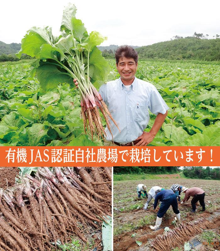 完全国産の有機JAS認定品!「こだま食品 有機高原のごぼう茶」.jpg